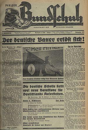Картинки по запросу «Bundschuh»