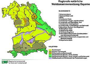 Wald Waldnutzung Historisches Lexikon Bayerns